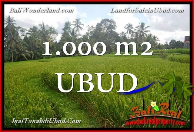1,000 m2 LAND IN UBUD BALI FOR SALE TJUB653