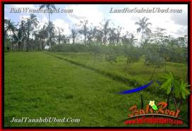 FOR SALE Magnificent PROPERTY LAND IN UBUD TJUB655