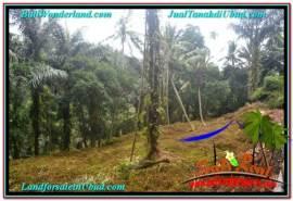 Beautiful PROPERTY LAND IN SENTRAL UBUD FOR SALE TJUB676