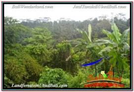 FOR SALE Exotic PROPERTY LAND IN UBUD TJUB682