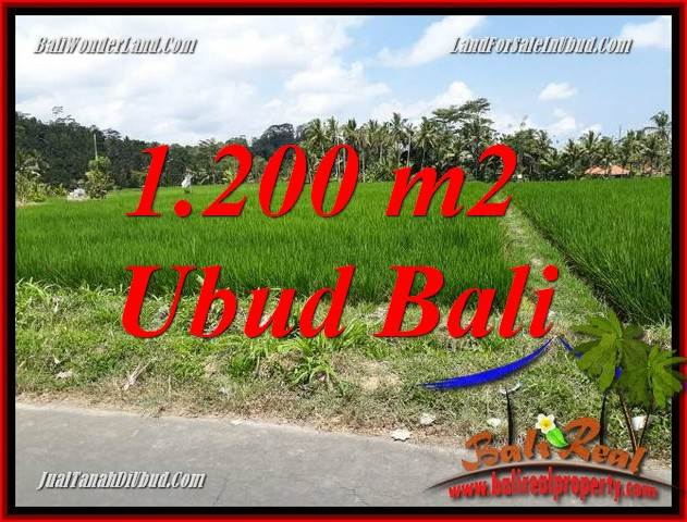 Exotic Land sale in Ubud TJUB694