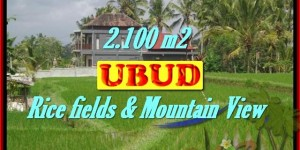 Land for sale in Bali, Fantastic view in Ubud Tegalalang – TJUB423