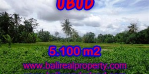 Land for sale in Bali, magnificent view Ubud Bali – TJUB368