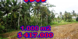 Land for sale in Bali, Exceptional property in Ubud Bali – 1.000 sqm @ $ 417