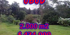 Exceptional Property in Bali, Land for sale in Ubud Bali – 2,000 sqm @ $ 217