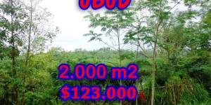 Land for sale in Bali, Extraordinary view in Ubud Bali – 2.000 sqm @ $ 61