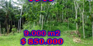 Land for sale in Ubud Bali, Unbelievable view in Ubud Pejeng – TJUB239