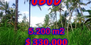 Land for sale in Ubud, Amazing view in Ubud Tegalalang Bali – TJUB296