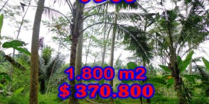 Land in Ubud Bali For sale 18 Ares with By the river side
