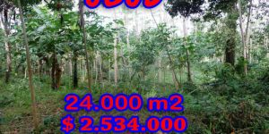 FabulousLand for sale in Ubud Bali, terraced rice paddy view in Ubud Payangan– TJUB263