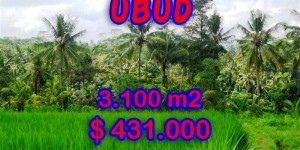 Land for sale Ubud Bali Magnificent view in Ubud Tampak siring – TJUB268