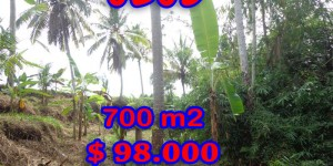 Land for sale in Ubud, Fantastic view in Ubud Tegalalang Bali – TJUB245