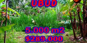 Land in Bali for sale, Excellent Property in Ubud Bali – 5.000 sqm @ $ 58