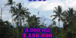 Stunning View 3.000 m2 Land for sale in Ubud Bali