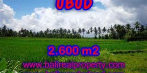 Outstanding Property for sale in Bali, land for sale in Ubud Bali – TJUB374