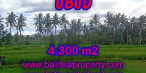 Land in Bali for sale, great view in Ubud Bali – TJUB370
