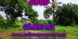Land in Bali for sale, Outstanding view in Gianyar Bali – TJUB366