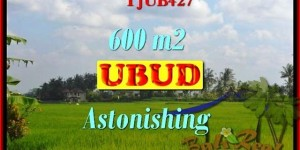 Magnificent PROPERTY 600 m2 LAND IN UBUD BALI FOR SALE TJUB427