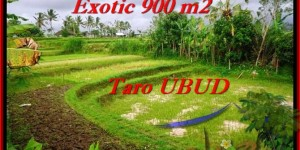 Exotic 900 m2 LAND FOR SALE IN UBUD TJUB464