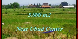 Exotic Ubud Center LAND FOR SALE TJUB474