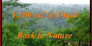 Exotic 1,300 m2 LAND IN UBUD FOR SALE TJUB481