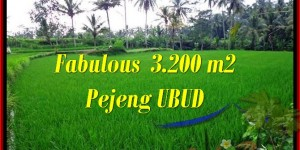 3,200 m2 LAND FOR SALE IN UBUD TJUB484