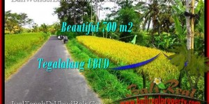 Affordable PROPERTY LAND SALE IN Ubud Tegalalang BALI TJUB497