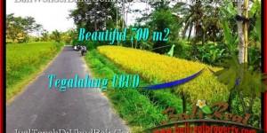 Affordable PROPERTY LAND SALE IN Ubud Tegalalang BALI TJUB497