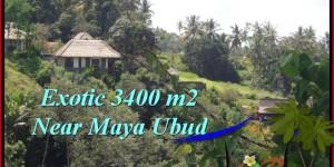 FOR SALE Affordable PROPERTY LAND IN Ubud Tengkulak BALI TJUB514