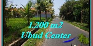 LAND FOR SALE IN Sentral Ubud BALI TJUB525