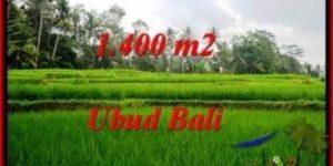 Magnificent UBUD BALI 1,400 m2 LAND FOR SALE TJUB539