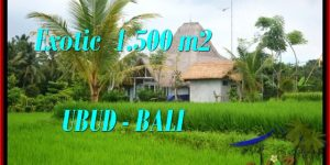 Magnificent LAND IN UBUD FOR SALE TJUB541
