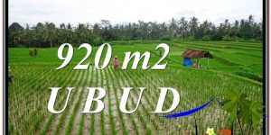 Magnificent PROPERTY 920 m2 LAND IN Ubud Payangan FOR SALE TJUB575