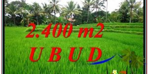Magnificent 2,400 m2 LAND FOR SALE IN Sentral Ubud TJUB587