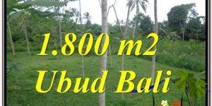 Magnificent PROPERTY UBUD BALI 1,800 m2 LAND FOR SALE TJUB610