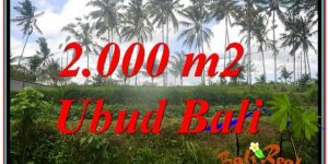 Magnificent PROPERTY 2,000 m2 LAND IN Ubud Pejeng FOR SALE TJUB625