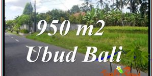 Affordable 950 m2 LAND SALE IN UBUD TJUB648