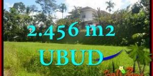 FOR SALE Beautiful PROPERTY 2,456 m2 LAND IN UBUD TEGALALANG TJUB654