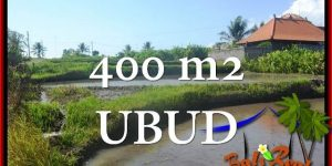 UBUD BALI 400 m2 LAND FOR SALE TJUB659