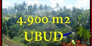 Magnificent UBUD BALI 4,900 m2 LAND FOR SALE TJUB665