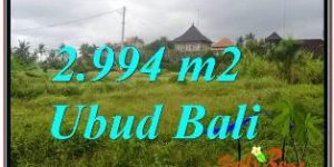 Beautiful PROPERTY 2,994 m2 LAND SALE IN SENTRAL UBUD BALI TJUB672