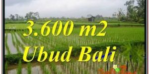 3,600 m2 LAND IN UBUD TEGALALANG FOR SALE TJUB673