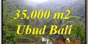Affordable LAND IN UBUDFOR SALE TJUB674