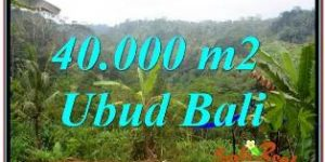 FOR SALE Cheap LAND IN UBUD Bali TJUB679