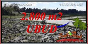 FOR sale Beautiful Property Land in Ubud TJUB722