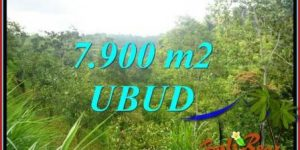 Magnificent Property 7,900 m2 Land in Ubud Tegalalang for sale TJUB729
