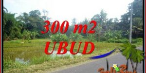Affordable Property Land for sale in Ubud Bali TJUB730