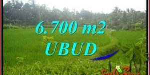 Beautiful Property Land in Ubud Bali for sale TJUB731