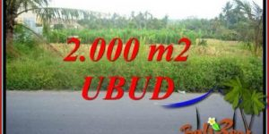 Exotic Ubud Bali 2,000 m2 Land for sale TJUB737