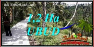 Magnificent Land sale in Ubud TJUB740